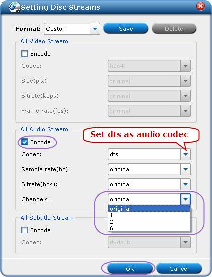 dvd to mkv with dts audio