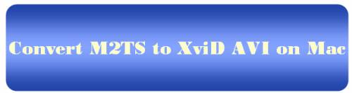 m2ts to xvid conversion mac