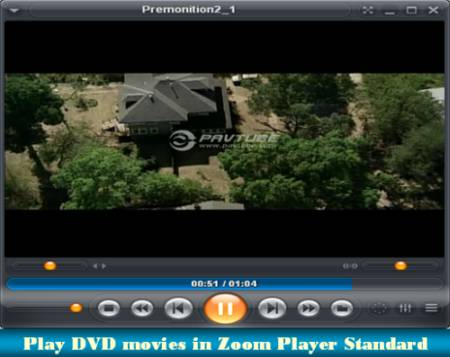 play dvd movies in zoom player standard