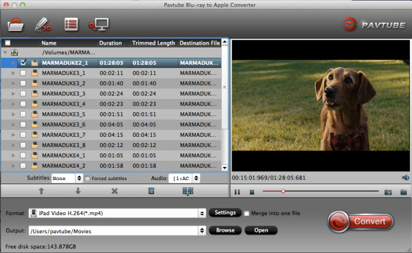 blu-ray to ipad converter for mac importing interface