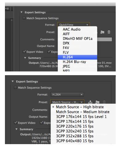 Import and Edit H 264 in Premiere Pro (CC, CS6, CS5, CS4)
